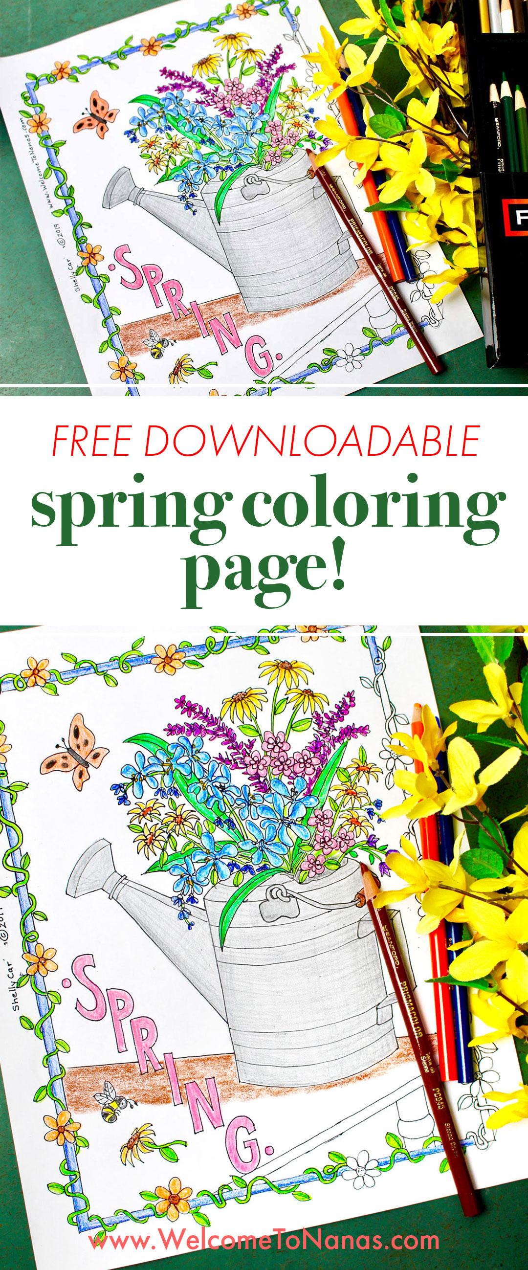 Hello Spring Activity Book for Kids Ages 4-8: Fun Spring Coloring Pages,  Dot to Dot, Mazes, Games, Puzzles and More!: Press, Mew: 9798613887163:  Amazon.com: Books | 2597x1080